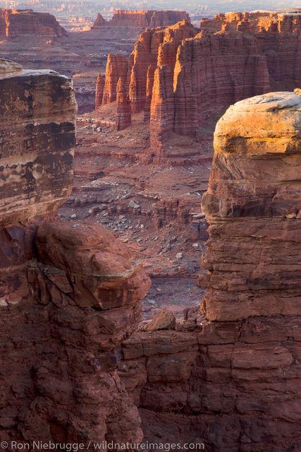 Monument Basin, along the White Rim Trail
