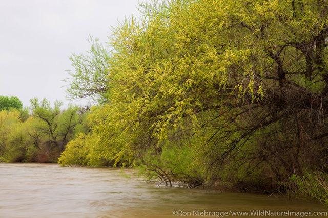 Verde River
