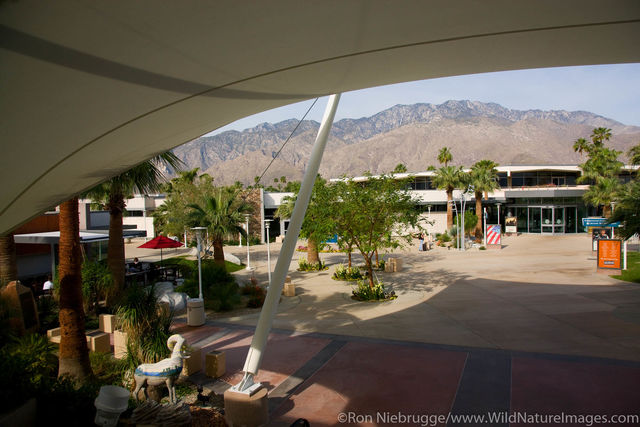 Palm Spring Airport