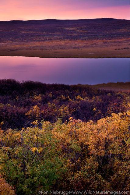 Sunrise Denali Highway