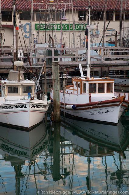 Monterey Hull Boats