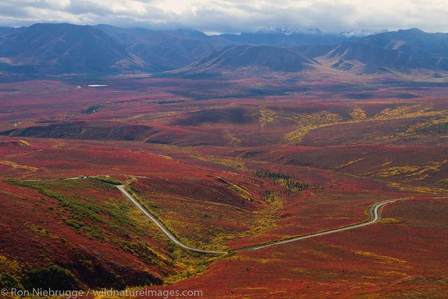 Fall, Denali National Park