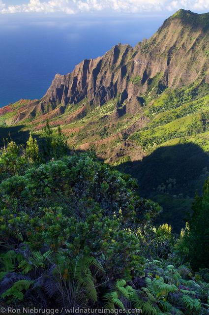 Kalalau Valley Kauai, Hawaii
