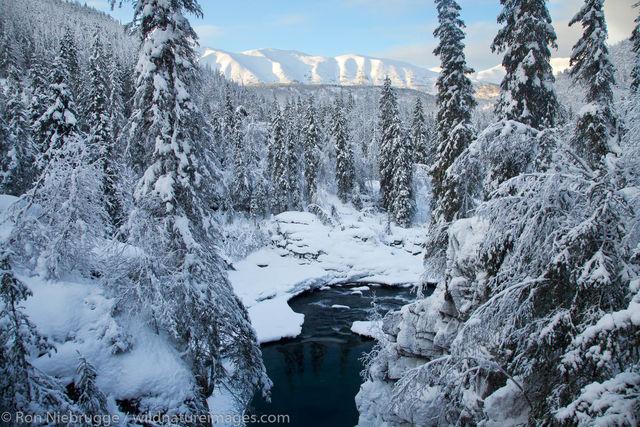 Winter at 6 Mile Creek