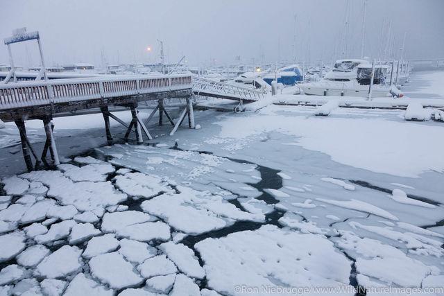 Seward Boat Harbor