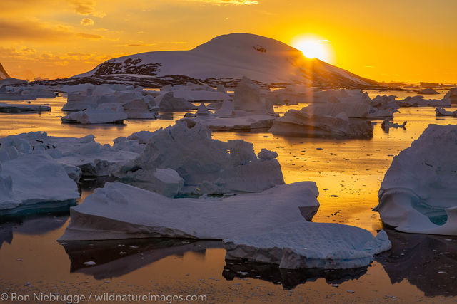Antarctic, Antarctic Peninsula, Antarctica, Bellinghausen Sea, Booth Island, Ocean, Oceans, Ron Niebrugge, Southern, Southern...