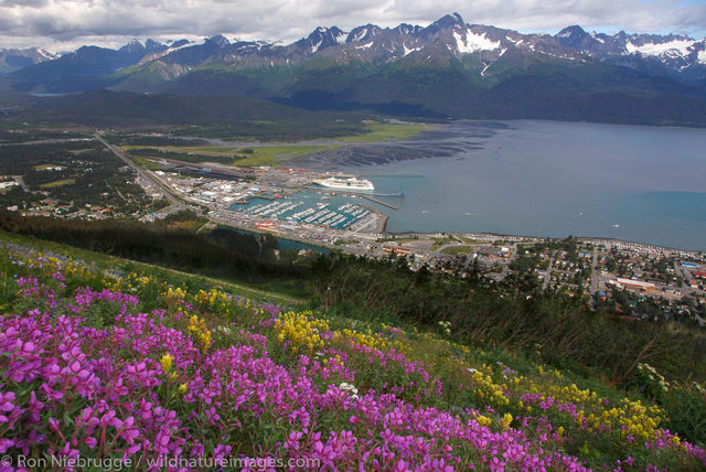 Seward, Alaska from Mt Marathon