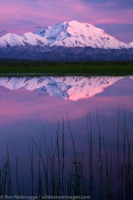 Denali Reflection at sunset.