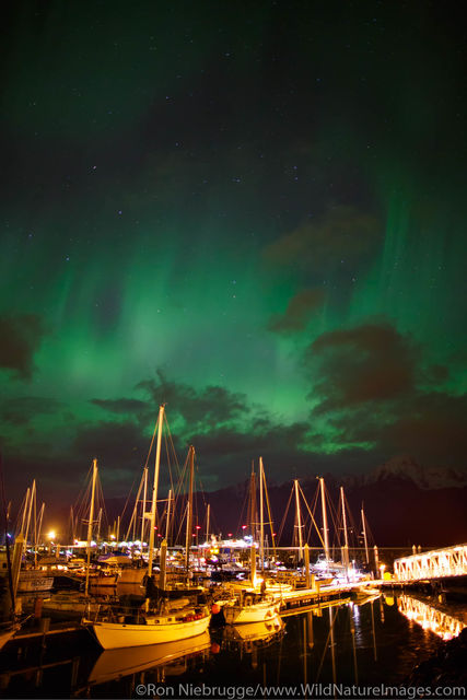 Northern Lights over the boat harbor