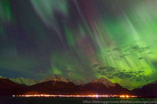 Northern Lights over Seward Boat Harbor