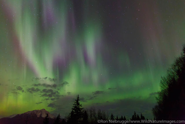 Aurora Borealis over Seward