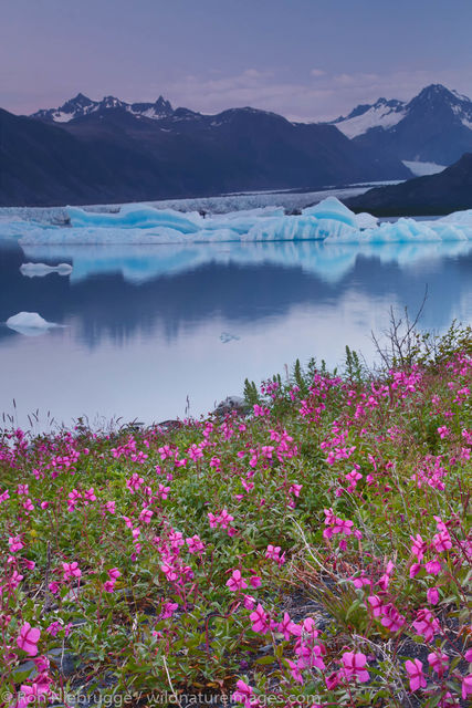 Kenai Fjords National Park, Alaska,