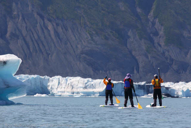 Stand up paddle boarders