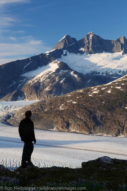 Hiker above the Mendenhall Glacier