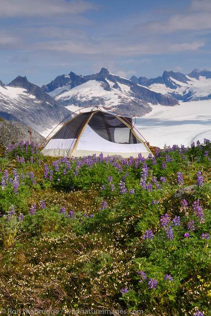 Camping above the Mendenhall Glacier