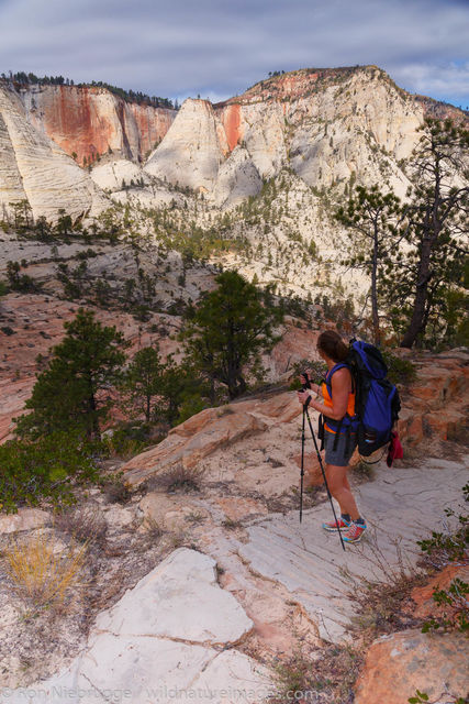 West Rim Trail, Zion National Park, Utah