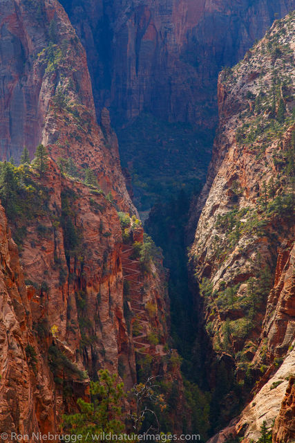 View from Rim Trail, Zion