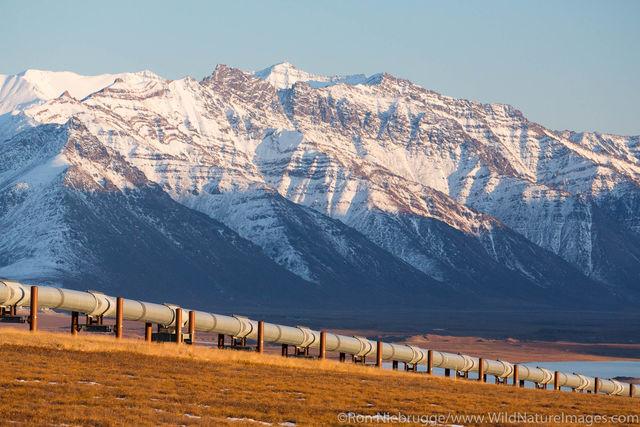 Trans Alaska Pipeline