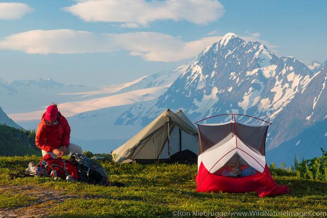 Camping Spencer Glacier Bench