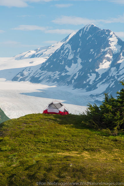 Camping Spencer Glacier Bench