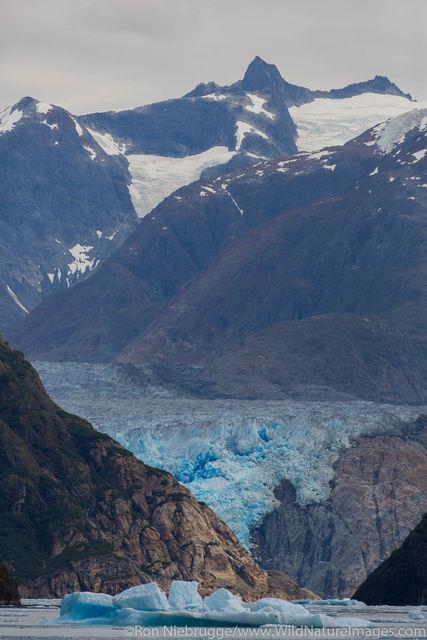 Tongass National Forest, Inside Passage, Alaska, sawyer glacier