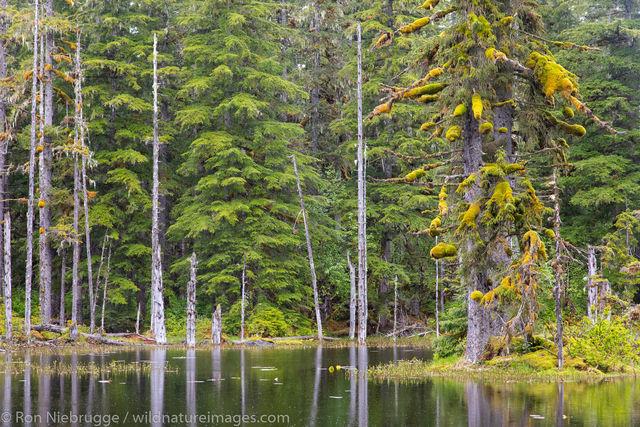 Glacier Bay National Park, Alaska, photos