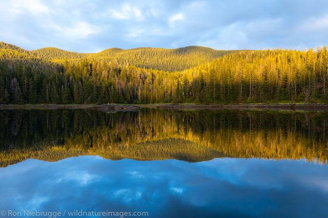 Tongass National Forest, Alaska