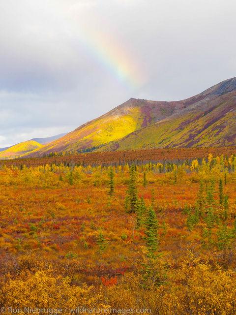 Arctic, Alaska, rainbow