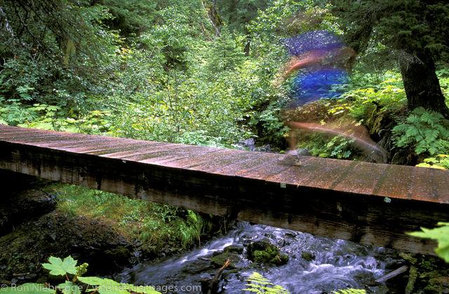 Running Resurrection River Trail
