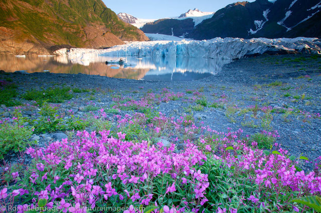 Kenai Fjords National Park, Alaska,