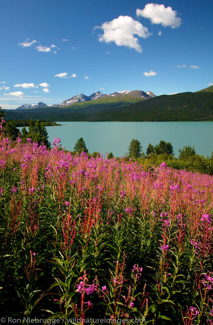 Kenai Lake, Alaska