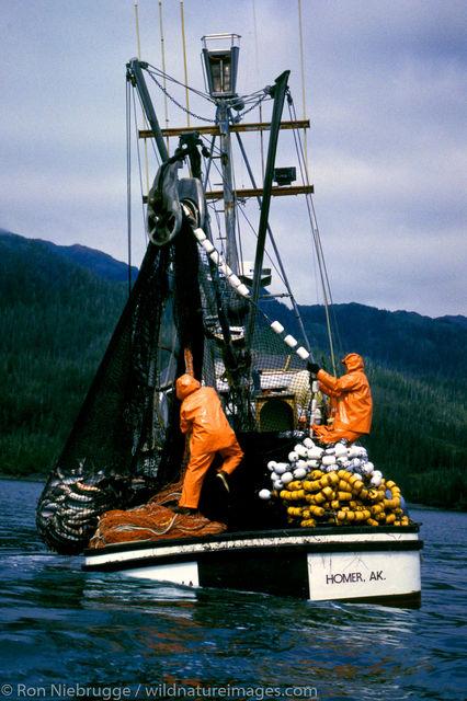 Salmon Seiner