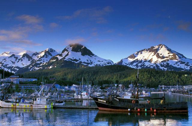 AK, Ak., Alaska, Americas, Cordova, North America, North American, Ocean, Oceans, Pacific Ocean, Ron Niebrugge, U.S., United...