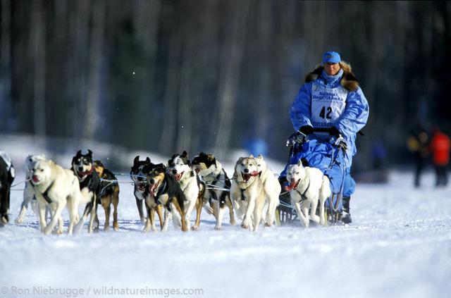 DeeDee Jonrowe Iditarod