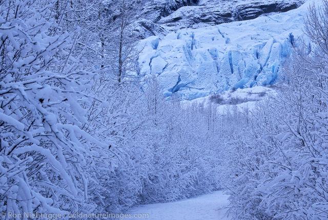 AK, Alaska, America, American, Americas, Exit, Kenai Fjords National Park, Kenai Peninsula, National, Niebrugge, North, North...