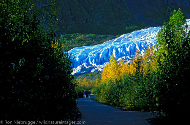 AK, Alaska, Alaskan, America, American, Americas, Autumn, Exit, Fall, Kenai Fjords National Park, Kenai Peninsula, National...