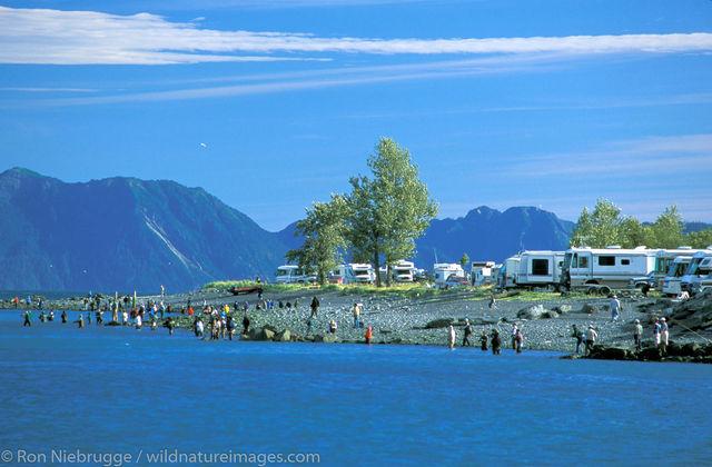 AK, Ak., Alaska, Alaskan, America, American, Americas, Kenai Peninsula, Niebrugge, North, North America, North American, Ocean...
