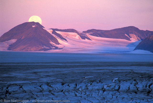 AK, Ak., Alaska, America, American, Americas, Harding Icefield, Ice field, Ice fields, Icefield, Icefields, Kenai Fjords National...