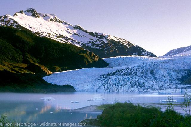 Tongass National Forest, Inside Passage, Alaska Mendenhall