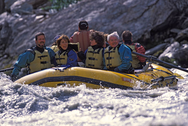 Alaska, Americas, Denali, Denali National Park, NP, National Park, Nenana River, North America, North American, Park, Recreation...