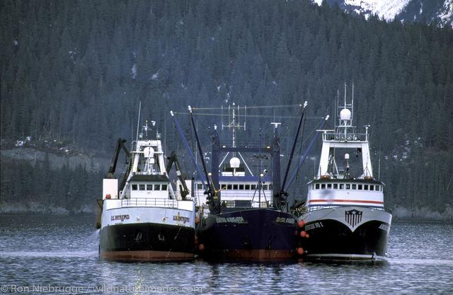 Trawler Two Tenders