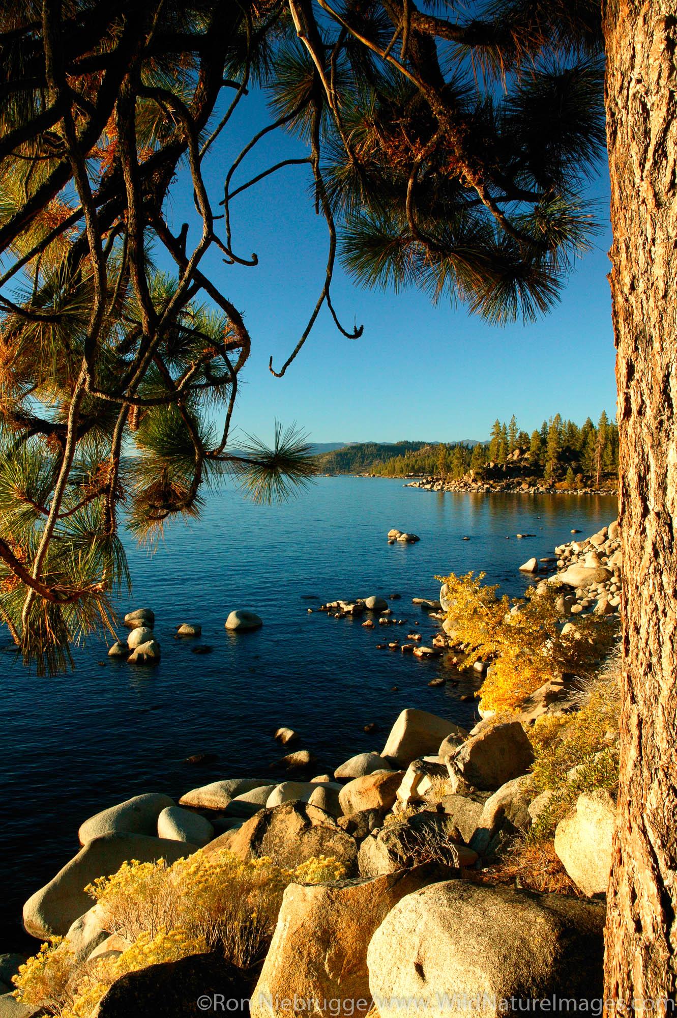 Lake Tahoe shoreline, Nevada / California.