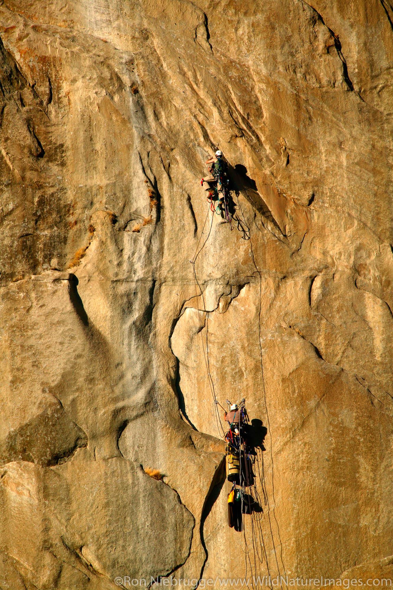 Climbers high upon El Capitan, Yosemite National Park, California.