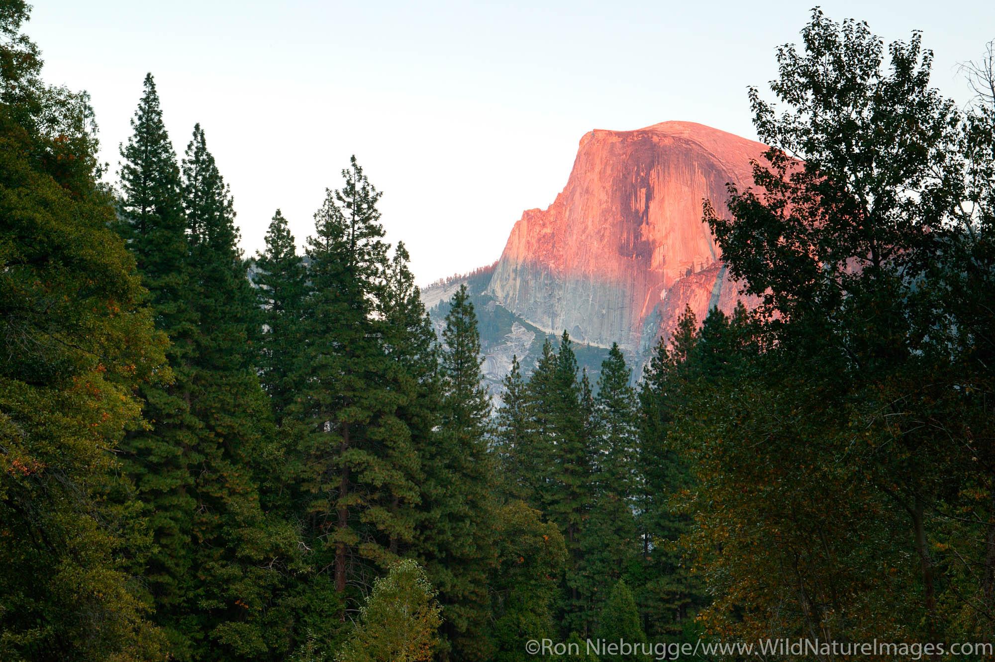 Half Dome at sunset, Yosemite National Park, California.