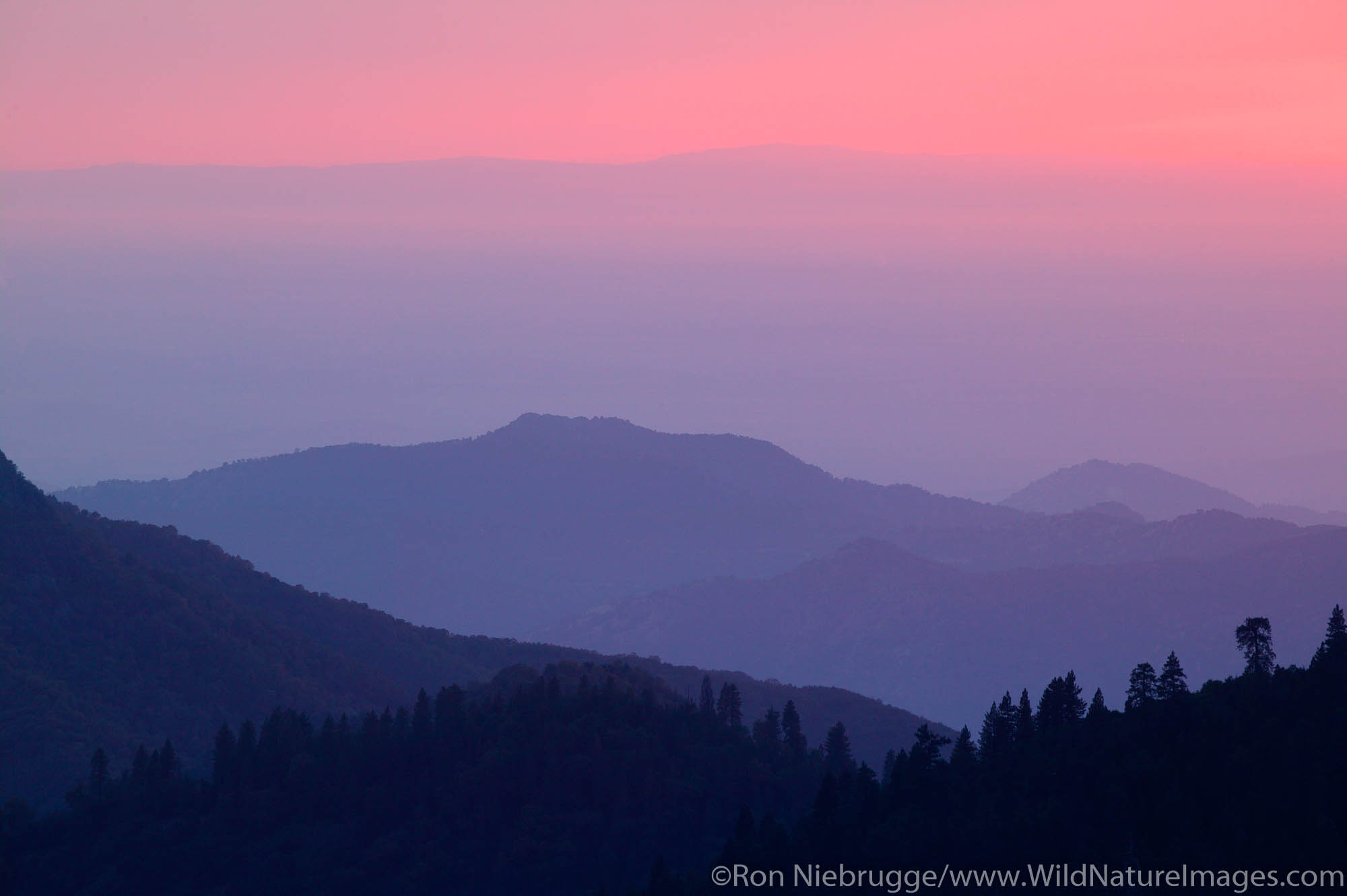 Looking out towards the California Central Valley from Sequoia National Park, California.