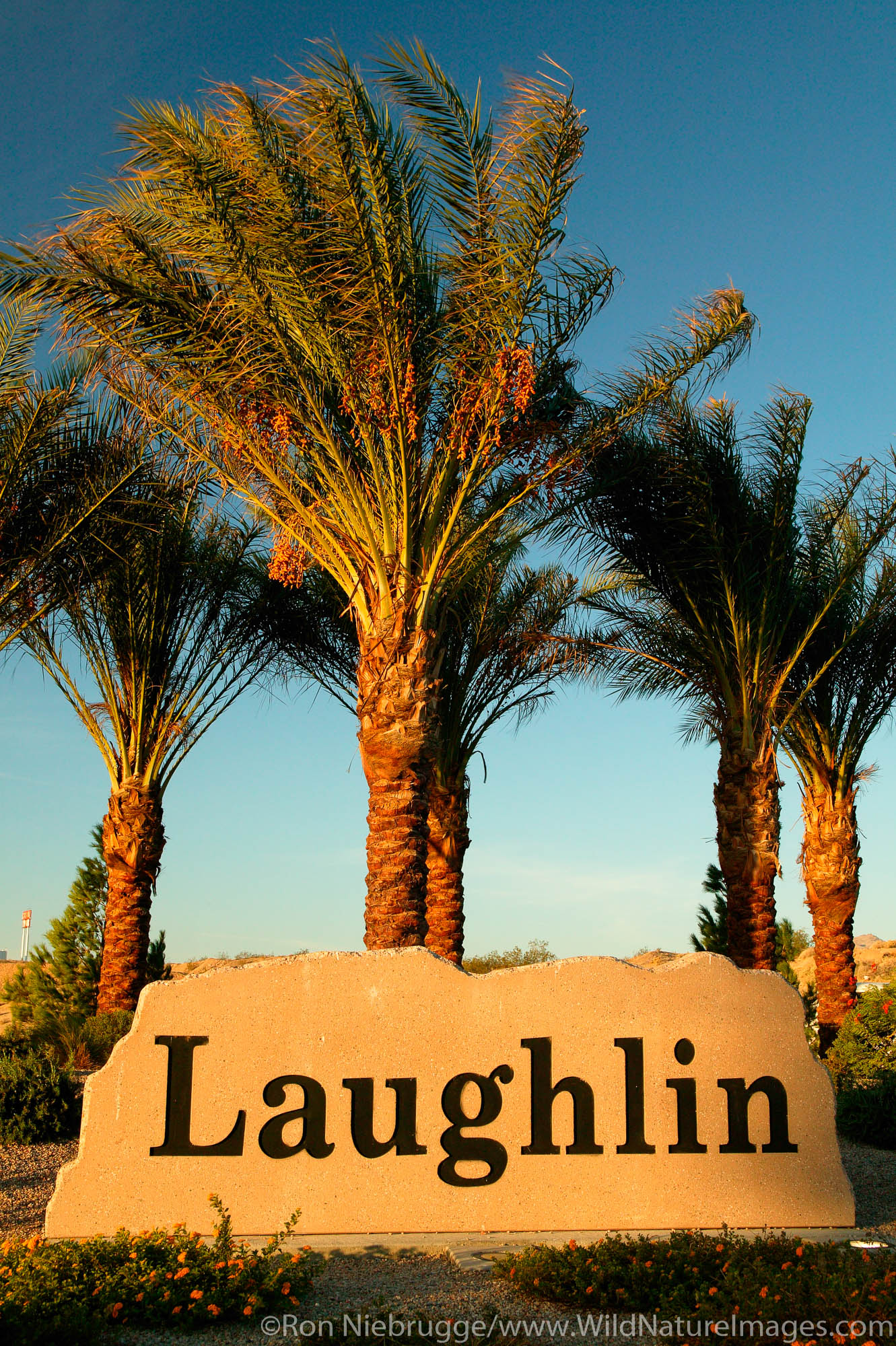Sign for, Laughlin, Nevada.