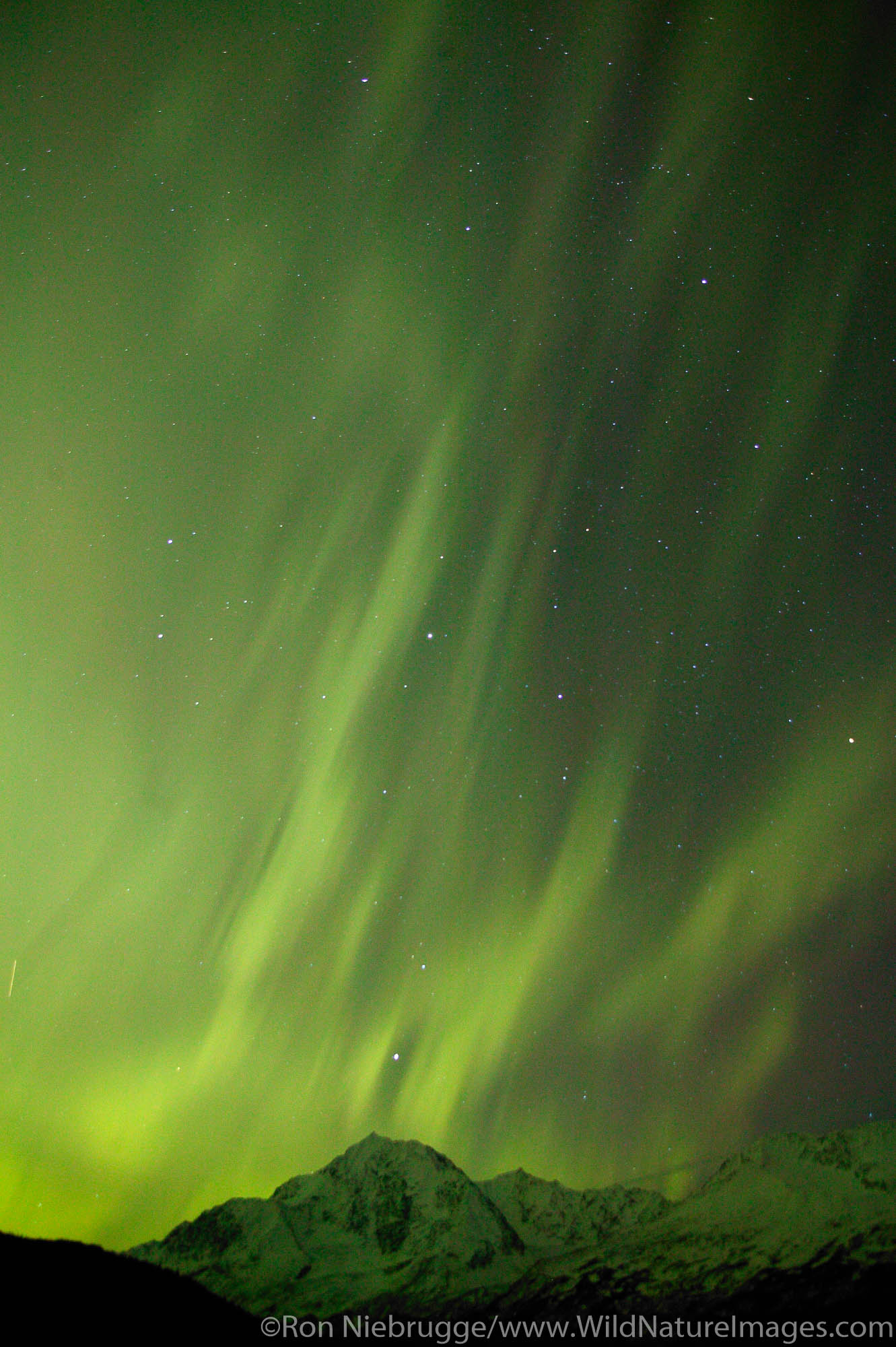 Colorful Northern Lights (Aurora Borealis) over the mountains of the Chugach National Forest on the Kenai Peninsula near Seward...