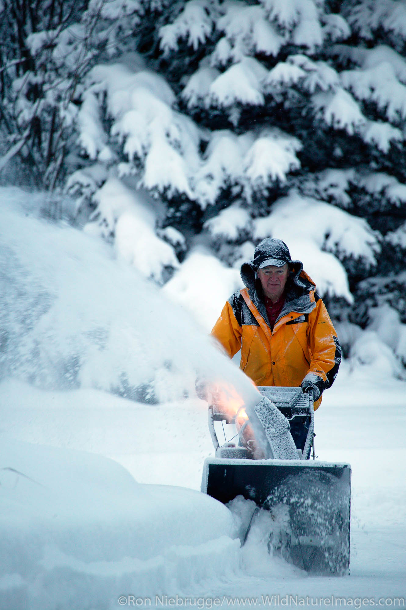 Man snowblowing his driveway after fresh winter snowstorm.  (Model Released)