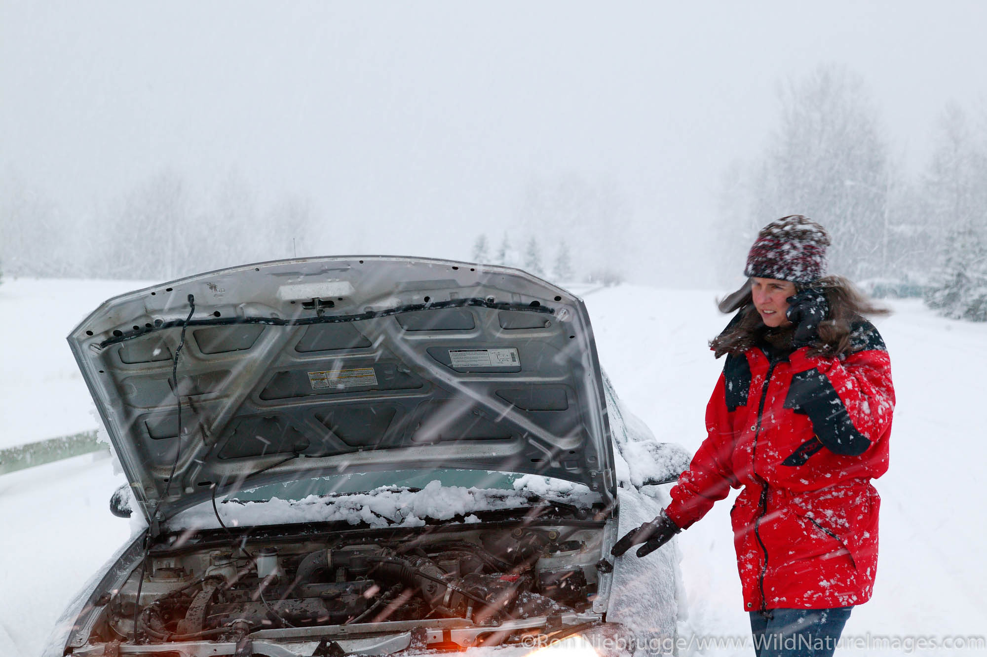 A female traveler with a disabled car, makes a call on her cell phone, during a winter snowstorm, Seward, Alaska.  (MR, PR)
