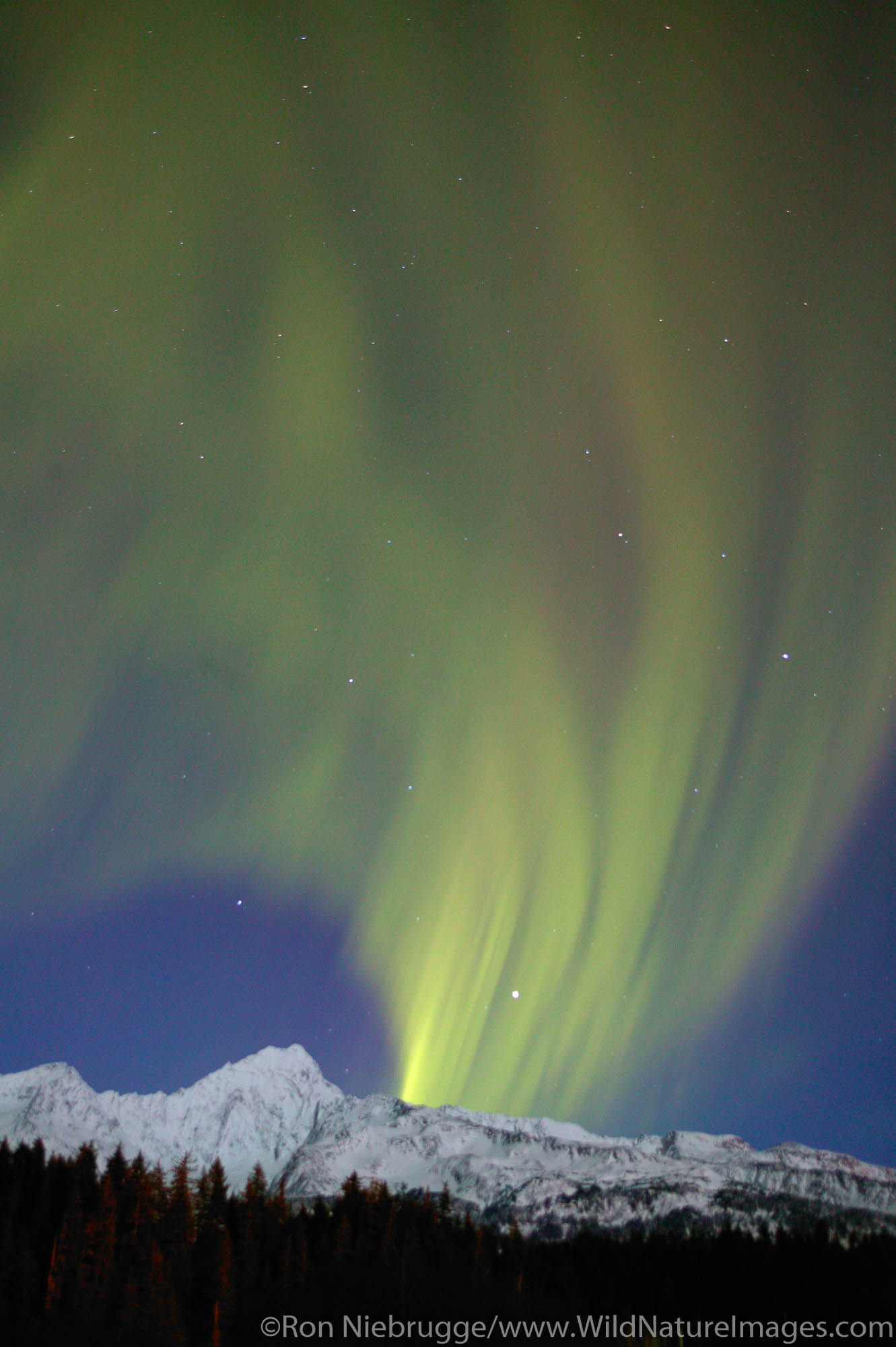 Kenai Fjords National Park, Alaska, Aurora Borealis, photo